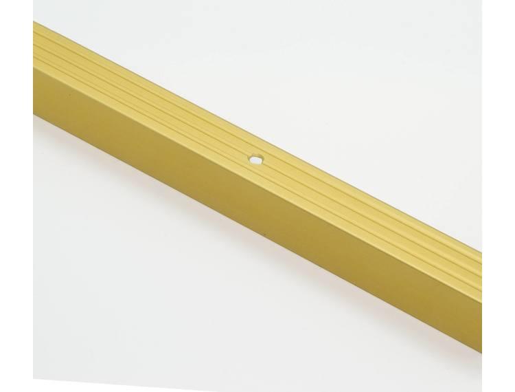 Prowalk 25209 trappenese alu Gull m/skruer 20 mm 90 cm
